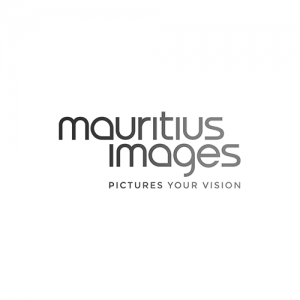Hub8_Funnelmarketing_Kunden_Mauritius Images_500x500